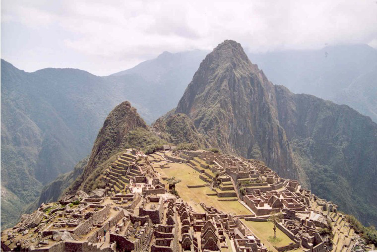Les oiseaux du Macchu Picchu