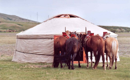 Fête du Naadam Karakorum