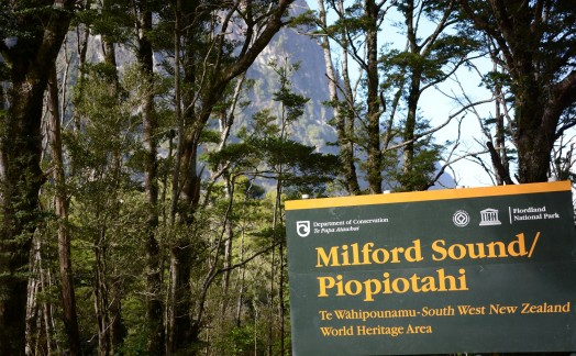 Route vers Milford Sound